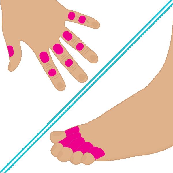 Dedos de manos y pies