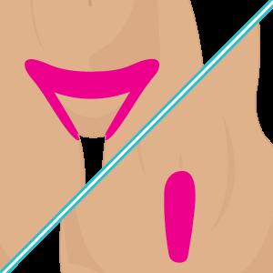 Bikini + 1/2 Línea Abdomen