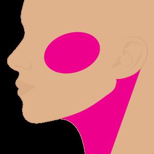 Cuello + Pómulos