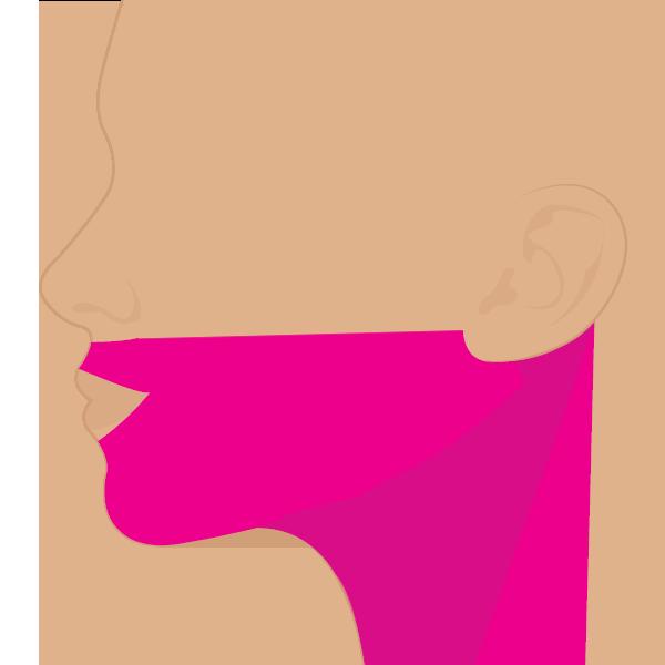 Cara + Cuello (sin pómulos)